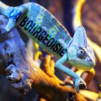 Da Bourgeoisie