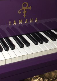New Piano for Piano & A Microphone